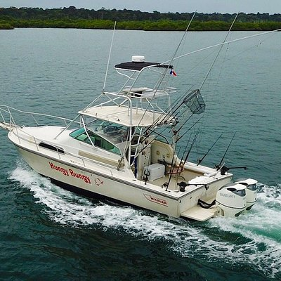 Hungy Bungy, our custom Boston Whaler express sportfishing machine