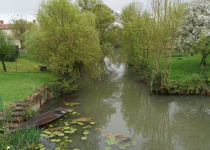 Canals in the 'Green Venice'