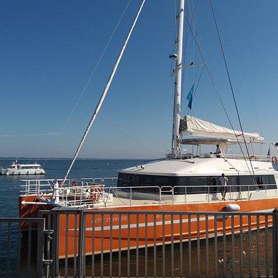 le catamaran pour la visite du bassin