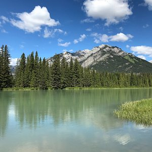 This is about 2 minutes walk from Banff Ave.