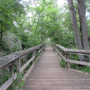 Trail like this will take you to the Falls