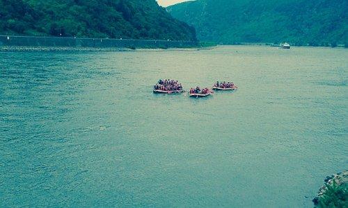 Kestert aan de Rijn