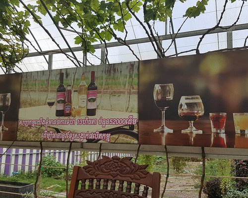 Cambodia's only Winery