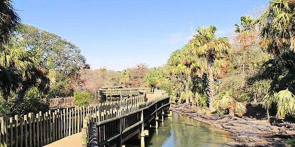walk around large gator pond