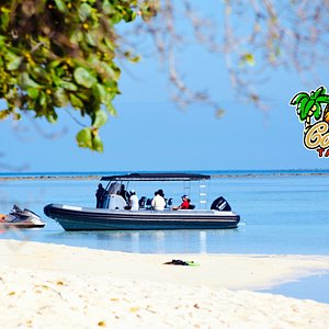 Bateau de coconut sur l'ïlot Larégnère