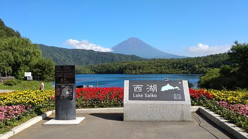 The View form Lake Saiko