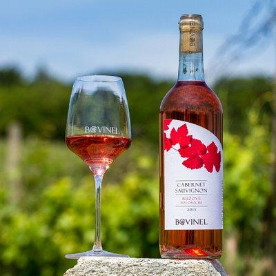 Cabernet Sauvignon Rosé  - Bovinel on vineyard 2
