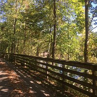 Part of the bike trail