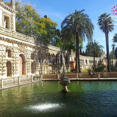 Visitará los Jardines del Alcazar en nuestros Tours