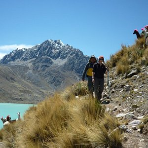 Llamas watching how we hike passed the lake on the Ausangate trekking circuit in Cusco, Peru.