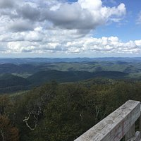 View from Bickle Knob observation tower
