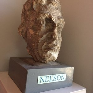 Nelson is still recognisable despite his fall from grace.