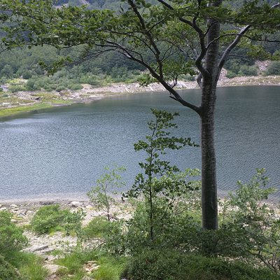 parziale vista del lago dall'area picnic verso monte