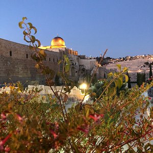 Elinor - Israel tour guide
