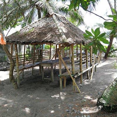 Navitas Beach. Black beach and mangroves.
