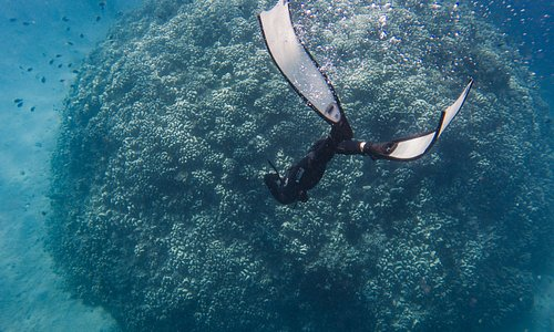 Fun diving in Pemuteran after the training session