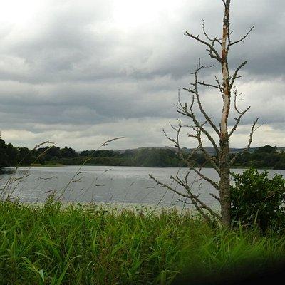 Balgavies Loch In Scotland