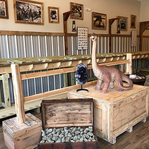 We invite you to visit our indoor, climate-controlled, gem mine & prehistoric gift shop.