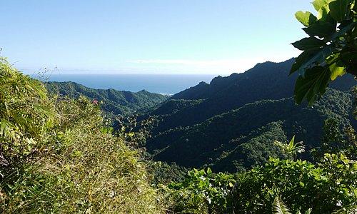 View from Te Rua Manga