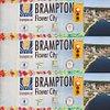 BarrieBrampton