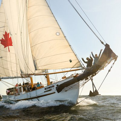Fly over the water on Maple Leaf's bowsprit while she soars through the water. Photo Tavish Camp