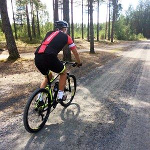 Bike trails in Elverum (Stavåsen Skiarena)