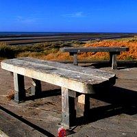 Kinmel Dunes Local Nature Reserve