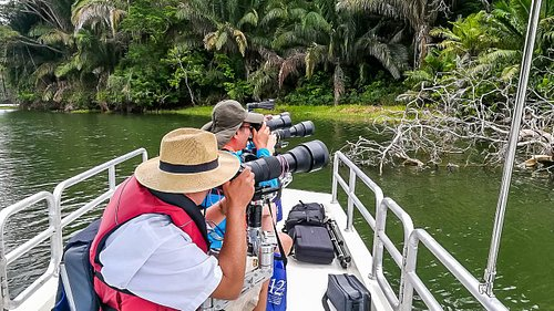 Sigma 150-600mm lenses are ideal for photographing the jungle wildlife