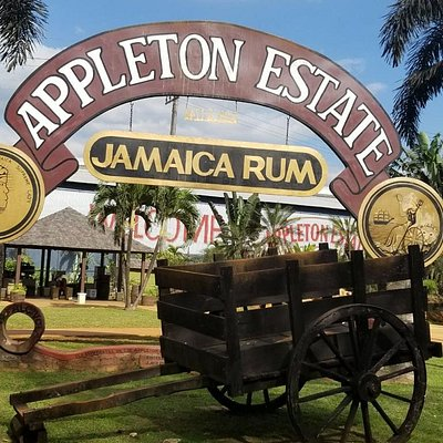 Want a mixture of fun and education? Is rum tasting and a walk through a distillery of any inter