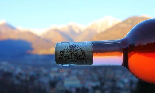 Rosé wine - Testa Rusa