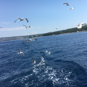 Super day at seaw