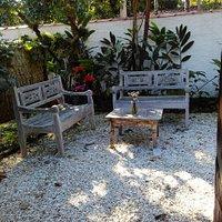 Pedacinho do jardim encantador...trópicos....
