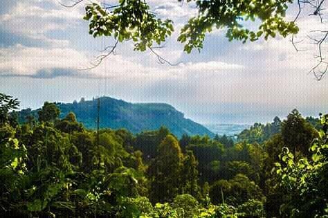 Mt Elgon view of slopes from Kapkwakwai Exploration center