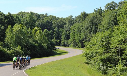 The Natchez Trace Parkway is the highlight of our Single Day Tours.