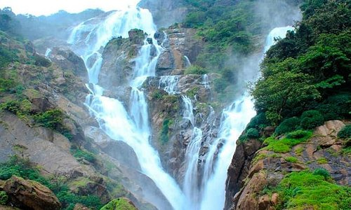 Private Full day Trip to Dudhsagar Falls with Lunch and Spice Plantation