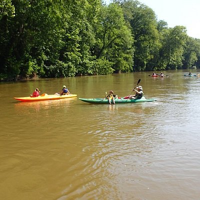Go kayaking, canoeing or paddle boarding on the beautiful Elk River