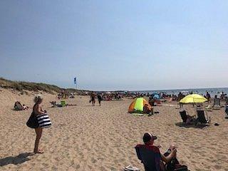 skrea beach looking southwards