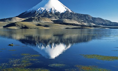 Dit is de in het Laguna Chungará weerspiegelde vulkaan Parinacota, gelegen Noord-Chili.