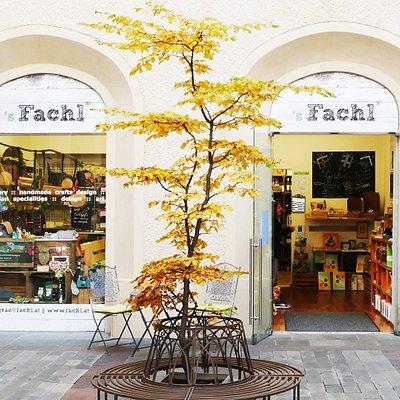 Eingang zum ´s Fachl Graz