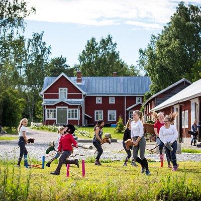 Stall Langvik