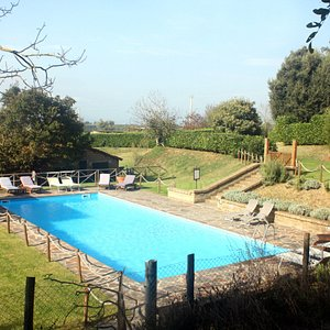 Antica Olivaia's Pool
