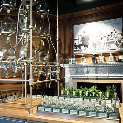 Welcome to the Cambridge Gin Laboratory!
