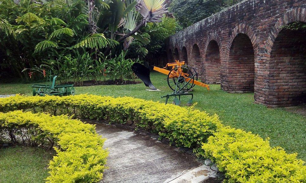 valley's farms sugar cane tour