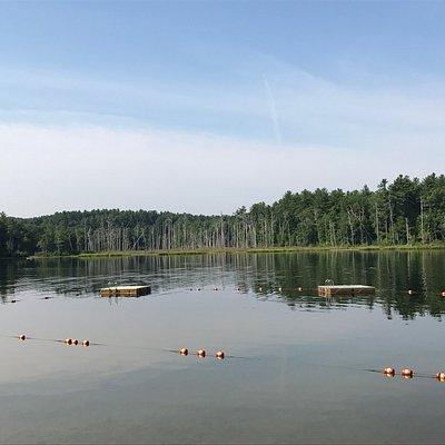 Pomp's Pond