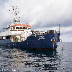 Barco Ferox