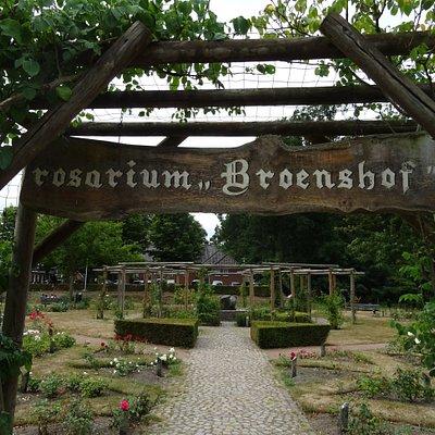 """Rosarium """"De Broenshof"""" naast """"De Tuinen van Diepenheim"""""""