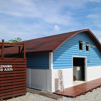 沖縄ダイビングショップクラブアクシス 美ら海水族館近くの瀬底島 体験ダイビング シュノーケルレンタルセット
