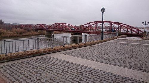 Puente Reina Sofía.