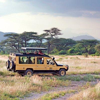 Safari car 4*4