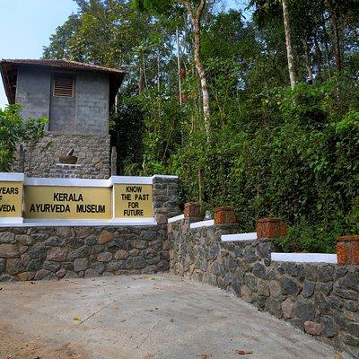 Kerala Ayurveda MuseumThekkady